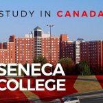 Chương trình học đa dạng với trường Seneca College