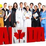 Đất nước tiềm năng về cơ hội định cư và việc làm sau khi tốt nghiệp
