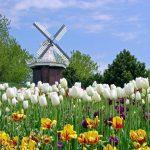 5 điều bất ngờ thú vị về đất nước Hà Lan