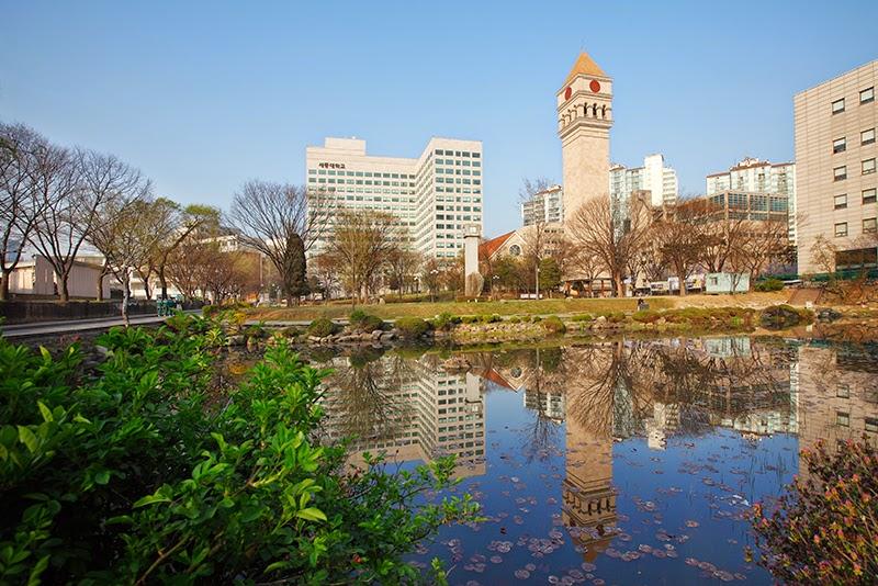 Image result for đại học sejong