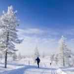 Giới thiệu về đất nước Phần Lan