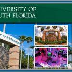Du học Mỹ – trường University of South Florida