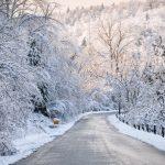 Các bí quyết nhằm tránh cái lạnh khi du học tại Canada