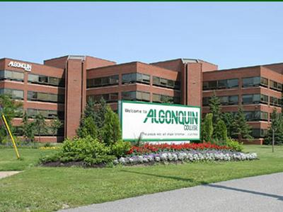 Image result for truong algonquin college